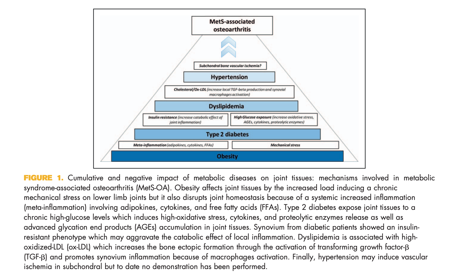 """Courties, Alice, Jérémie Sellam, and Francis Berenbaum. """"Metabolic Syndrome-Associated Osteoarthritis:""""  Current Opinion in Rheumatology  29, no. 2 (March 2017): 214–22.  https://doi.org/10.1097/BOR.0000000000000373 ."""