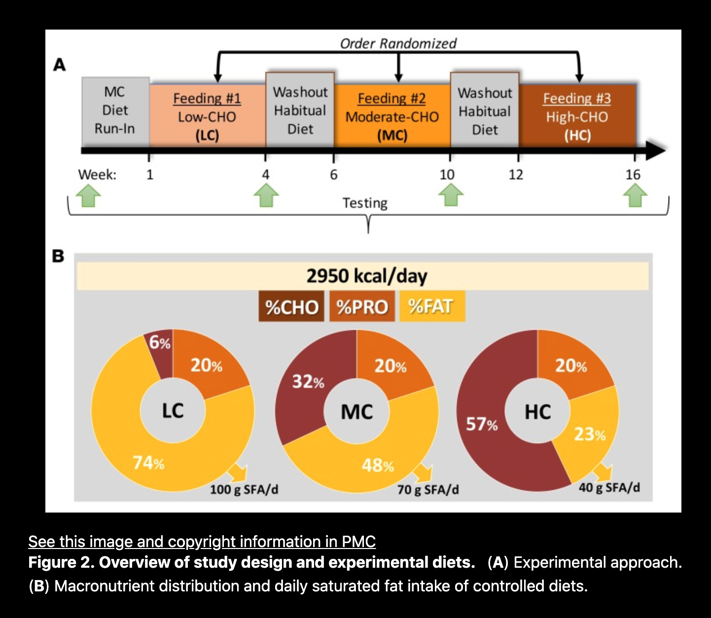 """Hyde, Parker N., Teryn N. Sapper, Christopher D. Crabtree, Richard A. LaFountain, Madison L. Bowling, Alex Buga, Brandon Fell, et al. """"Dietary Carbohydrate Restriction Improves Metabolic Syndrome Independent of Weight Loss.""""  JCI Insight  4, no. 12 (June 20, 2019): e128308.  https://doi.org/10.1172/jci.insight.128308 ."""