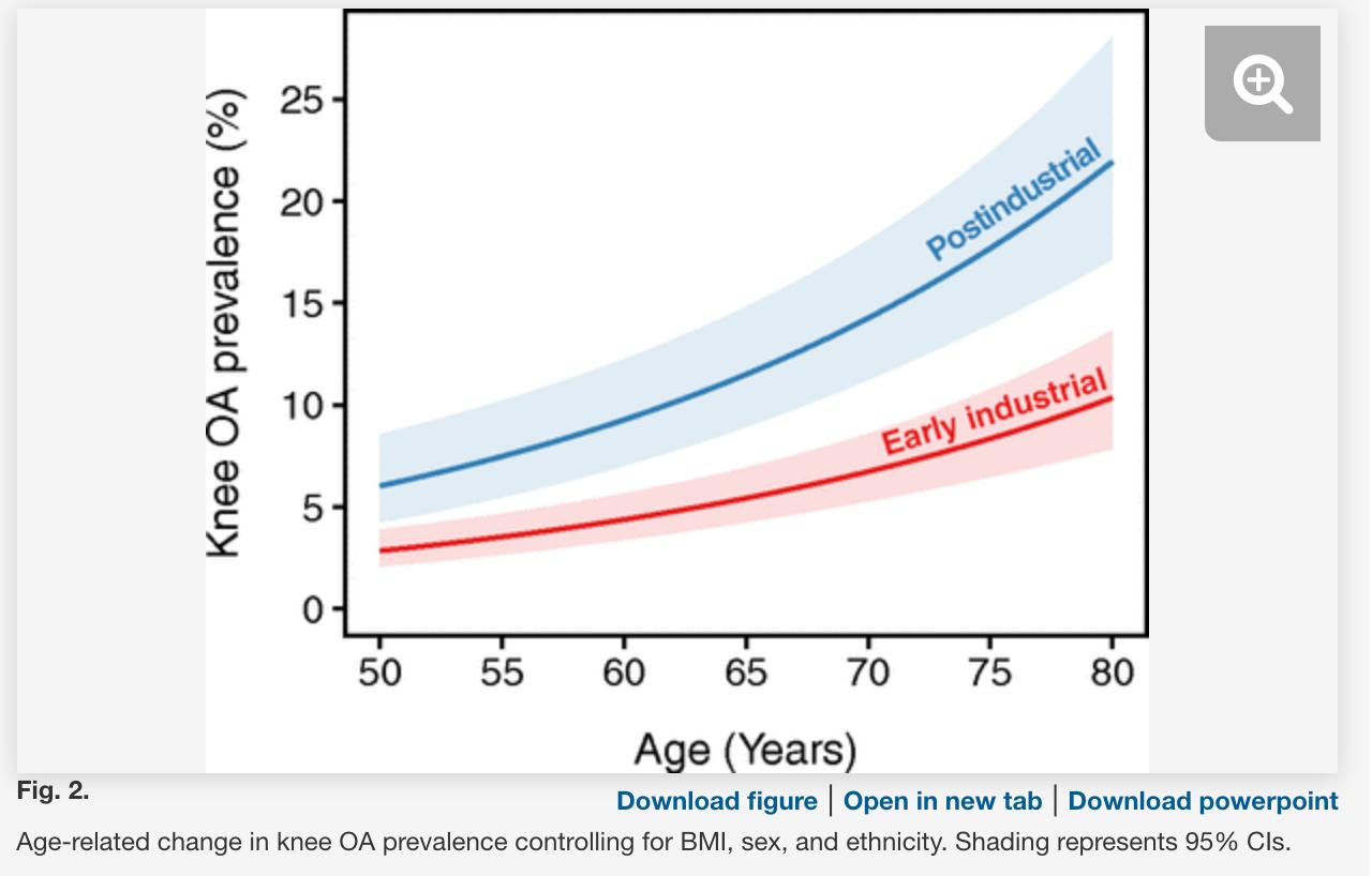 "Wallace, Ian J., Steven Worthington, David T. Felson, Robert D. Jurmain, Kimberly T. Wren, Heli Maijanen, Robert J. Woods, and Daniel E. Lieberman. ""Knee Osteoarthritis Has Doubled in Prevalence since the Mid-20th Century.""  Proceedings of the National Academy of Sciences  114, no. 35 (August 29, 2017): 9332–36.  https://doi.org/10.1073/pnas.1703856114 ."